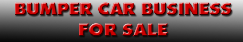 B-Car-Business-For-Sale-Text1